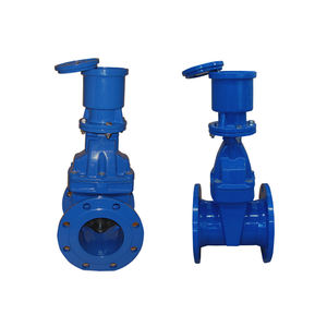 Hot Selling Ductile Iron Fire Hydrant Gate Valve