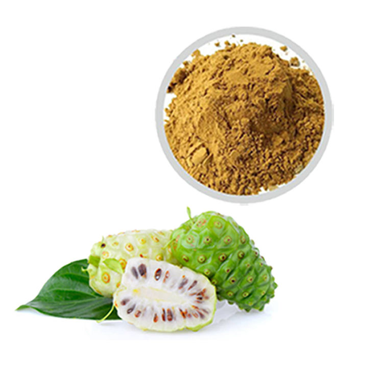 OEM private label Health Supplement Fruit Extract Juice Powder Morinda Citrifolia Noni Powder