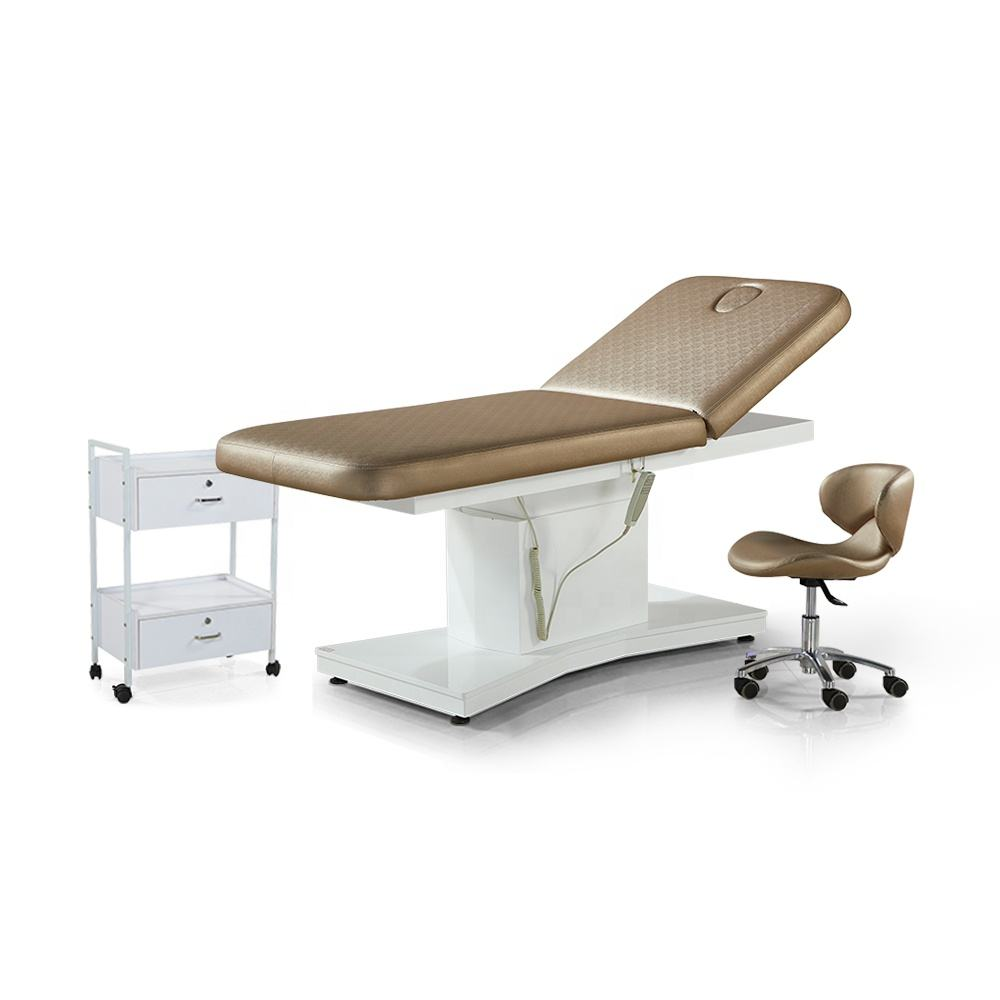 Modern Luxury Adjustable Height and Backrest Therapy Spa Salon Cosmetic Electric Beauty Treatment Massage Table Facial Bed