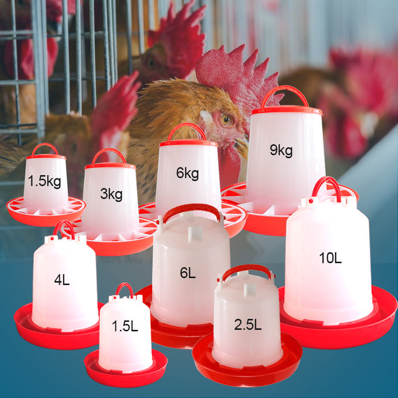 Plastic Poultry Feeder Pan Bucket Water Drinker Farm Equipment Auto Chicken Feeder