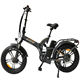 QUEENE/20 inch 48V750W Vintage electric bike fat tyre electric bicycle for adults