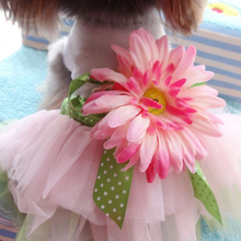 Luxury Summer Wedding Puppy Dress Dog Birthday Outfit Puppy Clothes Girl