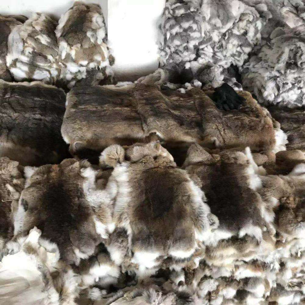 Wholesale price white chinchilla rabbit fur throw tanned rex skins