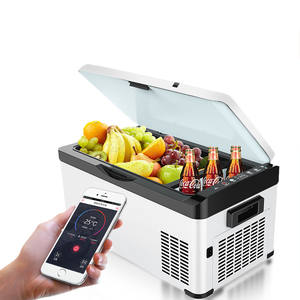 Mobile phone app control bluetooth thermo car refrigerator portable 12v compressor fridge freezer