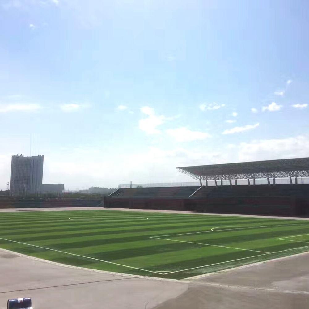 High Performance Sport Field Design India artificial grass cricket pitch