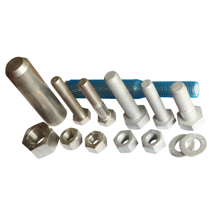 ODM/OEM High Tensile Bolts And Nuts Stainless Steel Nut and Bolt