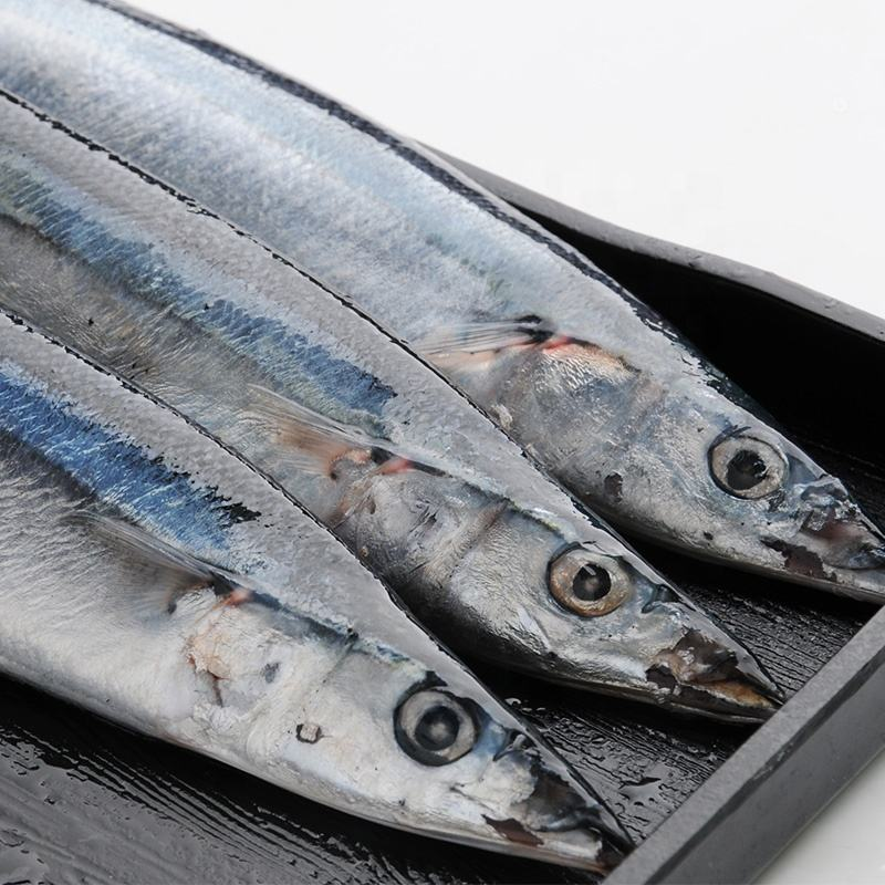 Packaging Customization Huiyang Food Seafood High Protein Frozen Saury