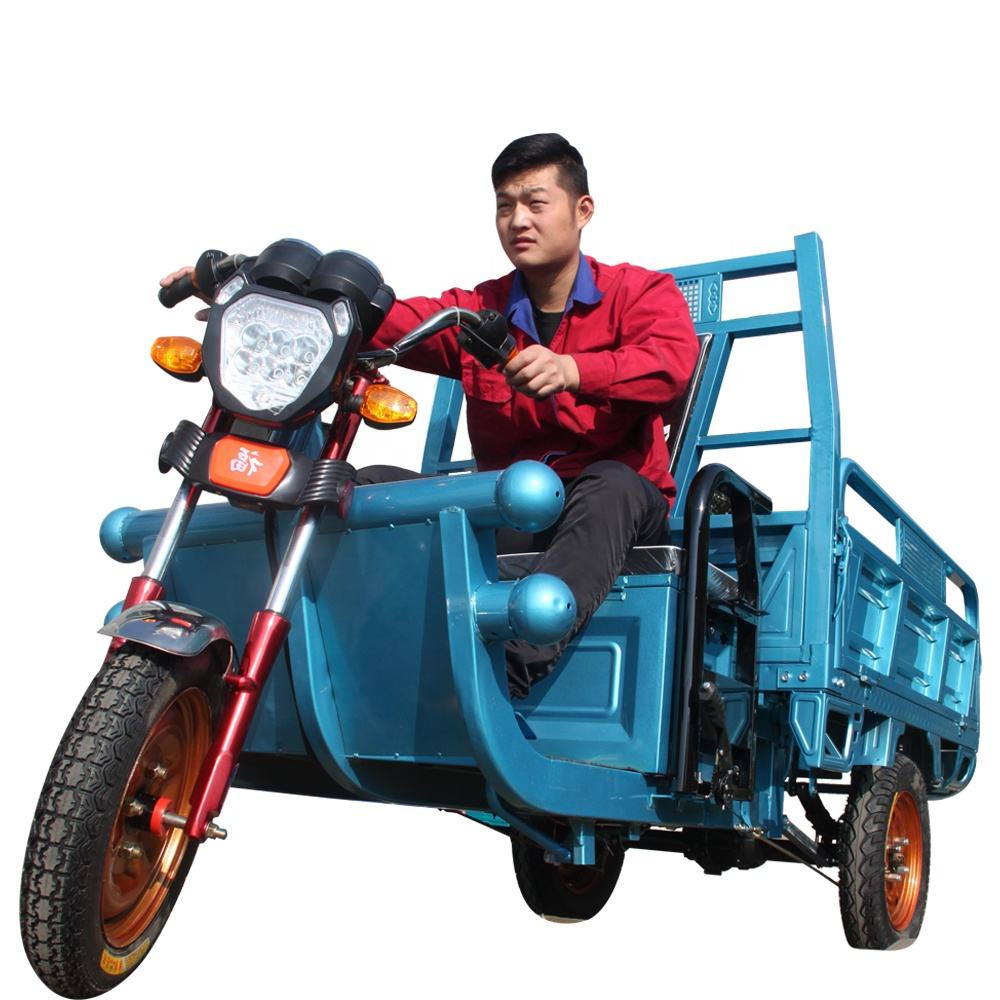 Mini Truck Cargo Tricycle Delivery Electric Tricycle 3 Wheel