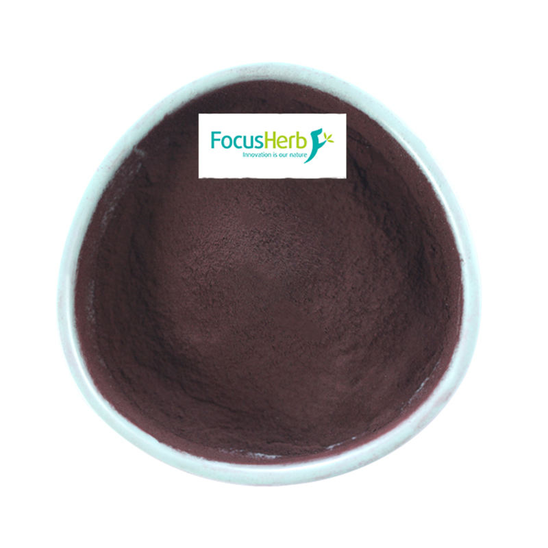 FocusHerb Black Carrot Extract 8% Anthocyanin , Black Carrot