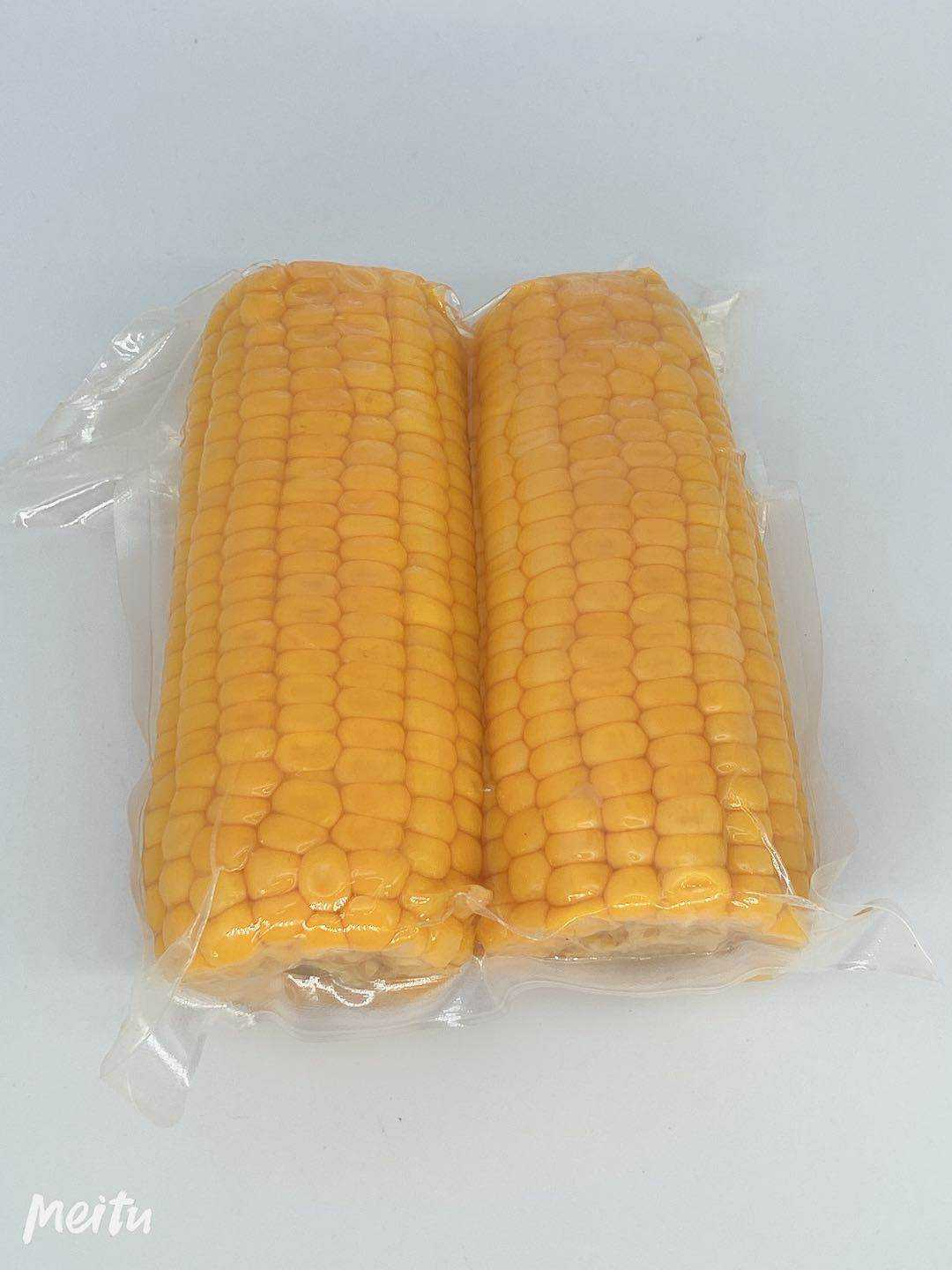 Fresh Vacuum Pack Sweet Corn On The Cob In Pouches