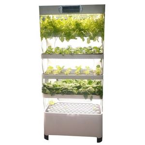 High quality Hydroponic vegetable equipment,Hydroponic seed sprouting machine