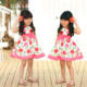 Wholesale baby clothes girl rose kelly cotton dress with lining size 3 to 13 years old