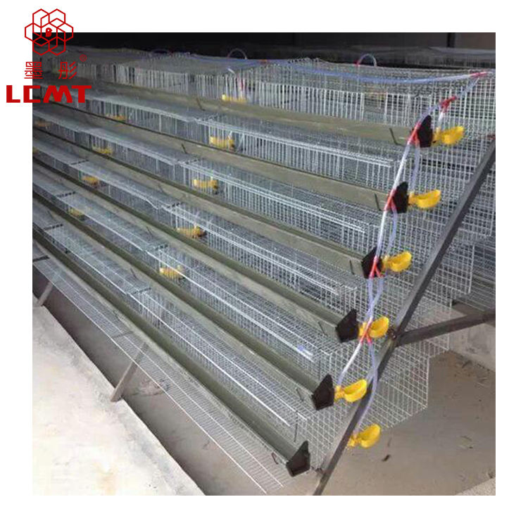 A type manual equipment commercial quail cage