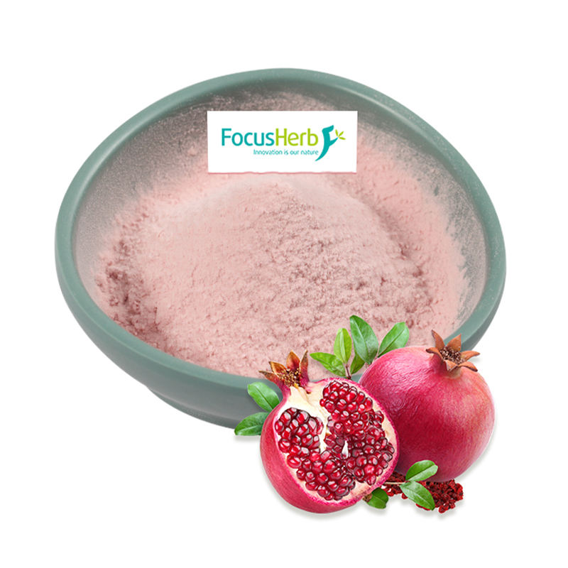 FocusHerb Spray Dried Concentrated Pomegranate Juice Powder