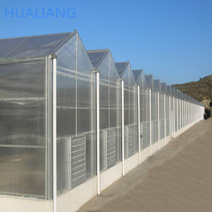 Agricultural frames galvanized steel pc sheet greenhouse for vegetables