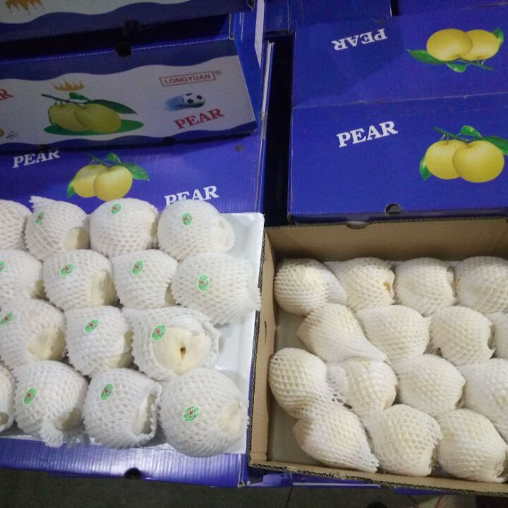 Agolyn New Crop Fresh Ya Pear