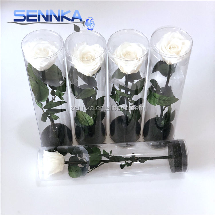 Decorative Flower Preserved Single Eternal Rose With Long Stem