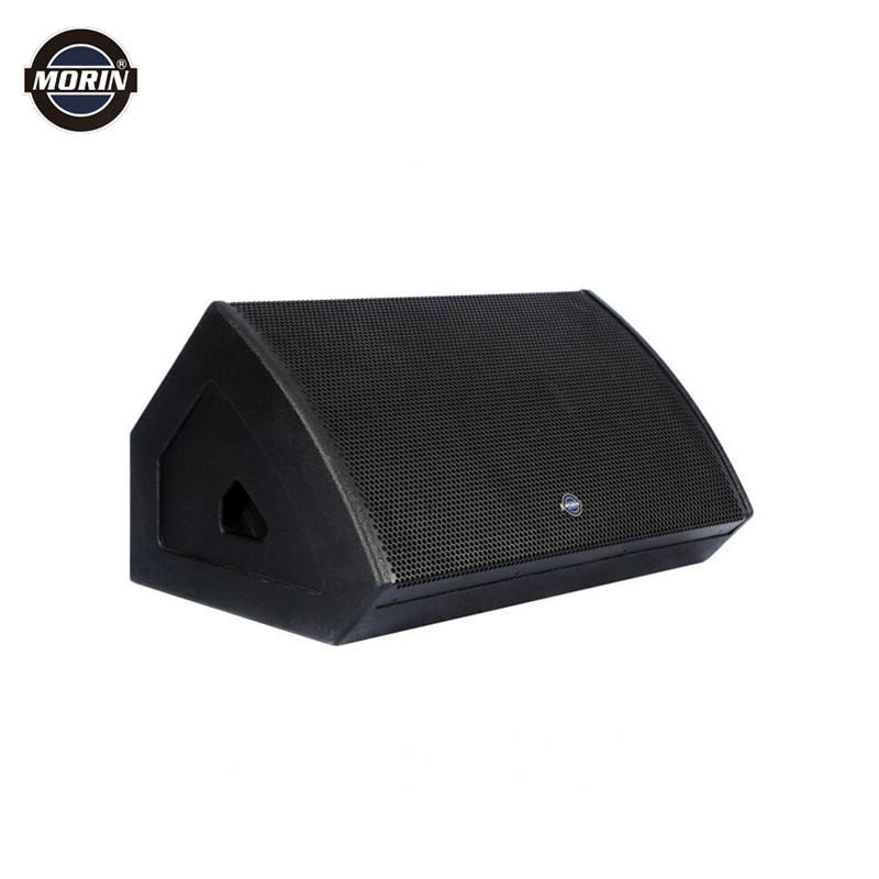 "15"" 2-Way Powered Speakers Stage Floor Active Monitor"