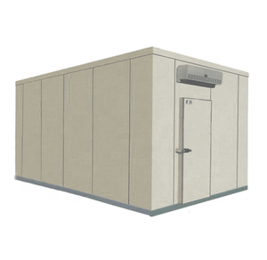 Mini freezer fish cold storage room double door manufacturer