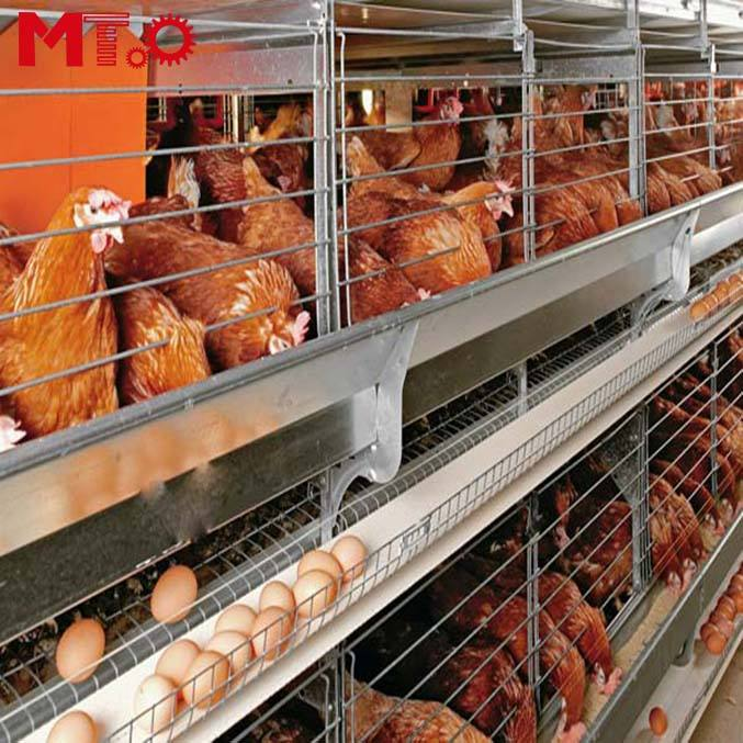 Best Price Automatic Egg Layer Chicken Farm Laying Hens Poultry Battery Cages for Sale.