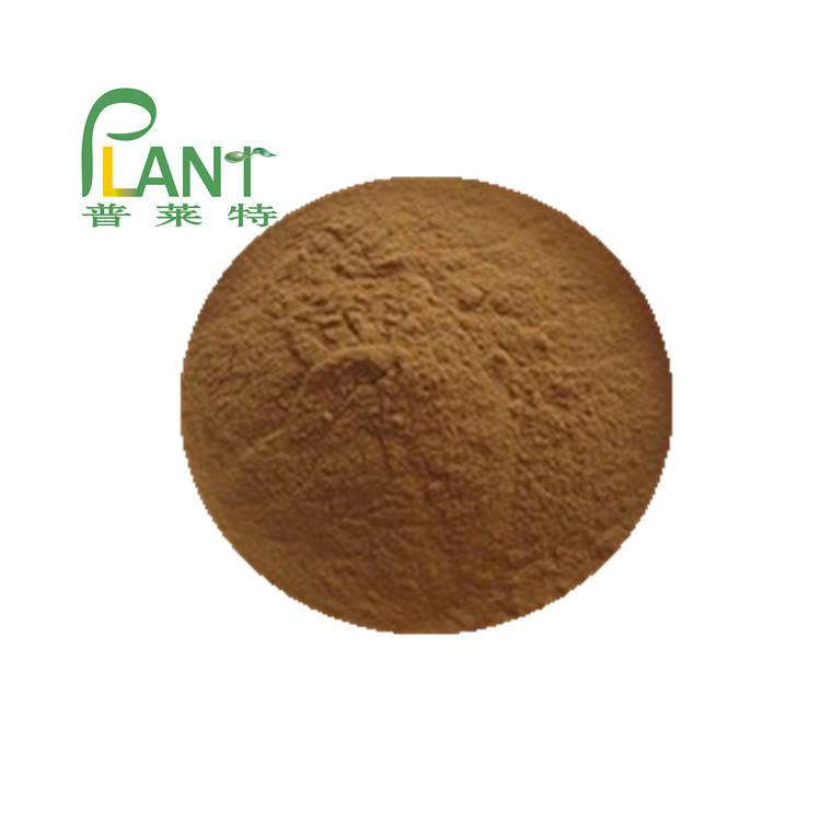 High quality Bitter Kola nut extract 1kg