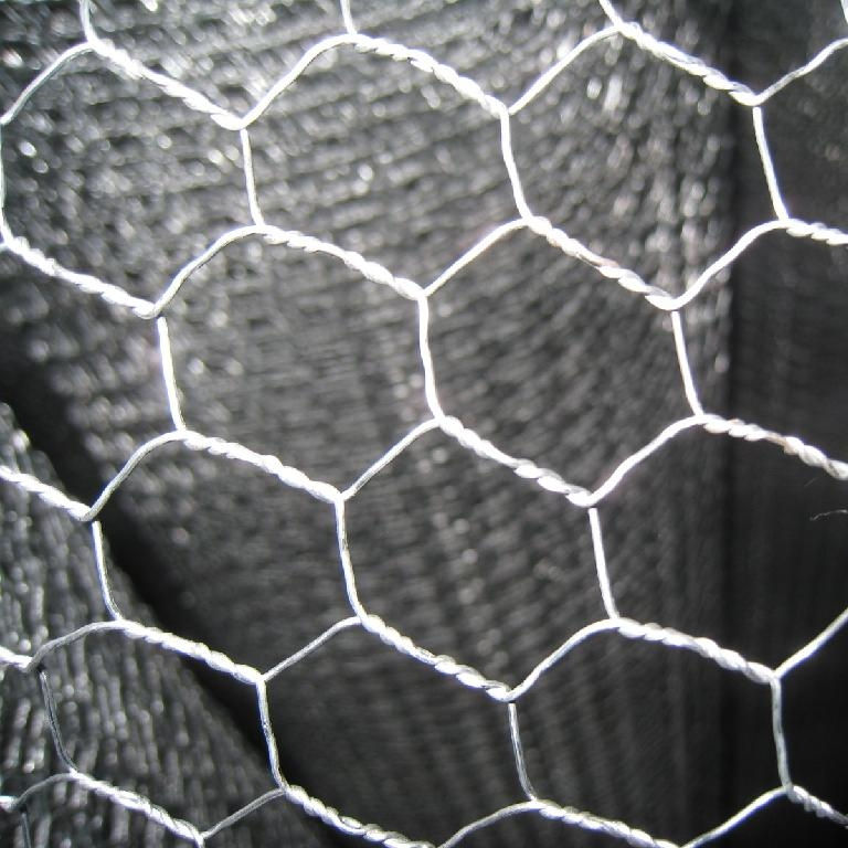 1/2'' 1'' galvanized hexagonal wire mesh/chicken mesh wire