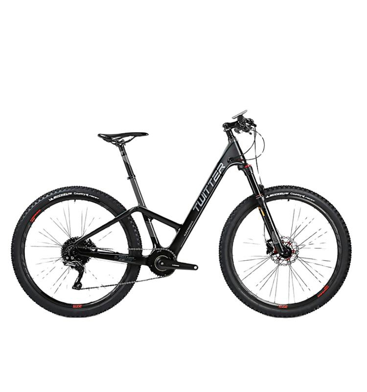 mountain electric bike 2019 250W Removable lithium battery mountain electric bicycle/e bike
