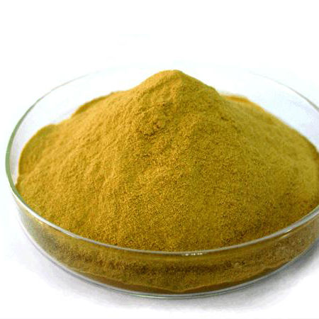 Hot sale probiotics for fish meal 100% inactive autolyzed yeast aquaculture probiotics for poultry feed additive
