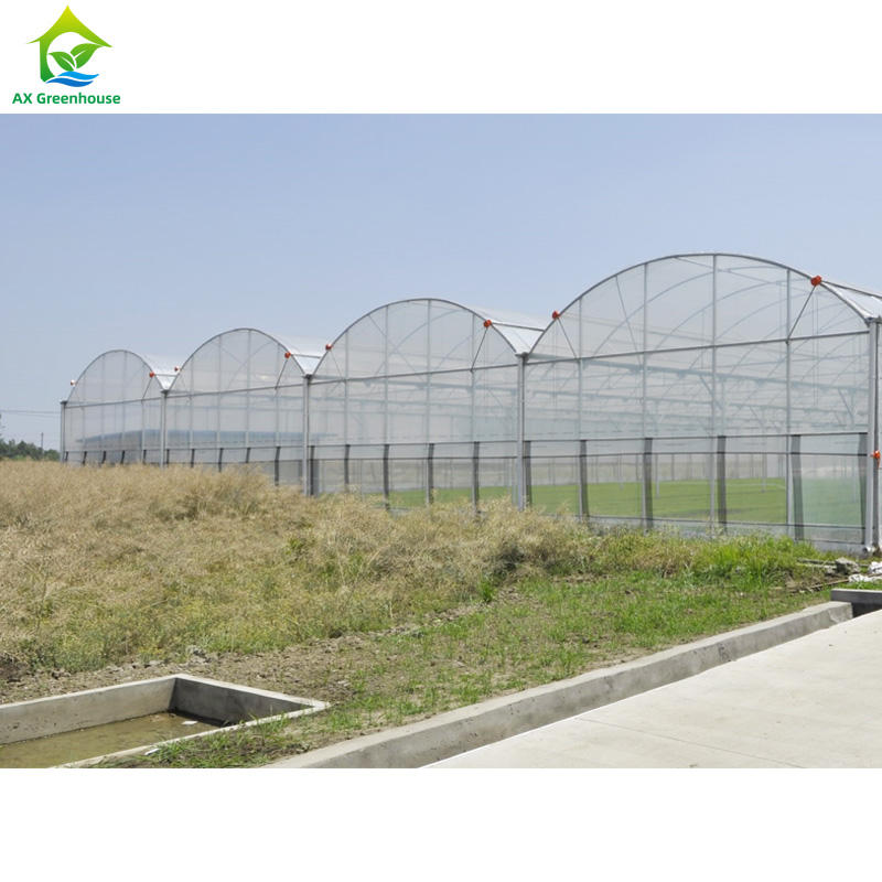 New Multi Span UV Protection Green house Agriculture with Anti Fog
