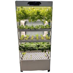 New product hydroponic float trays growing vegetables containers seeds trays