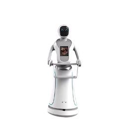 Humanoid food delivery robot