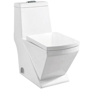 Sanitary Ware Types of Water Closet Price One Piece Toilet Color
