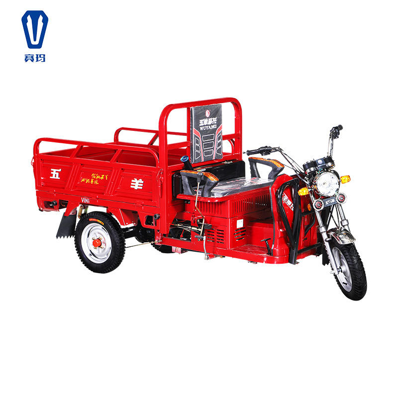 Gasoline tricycle professional production air cooled moto Petrol tricycle three wheel cargo motorcycle