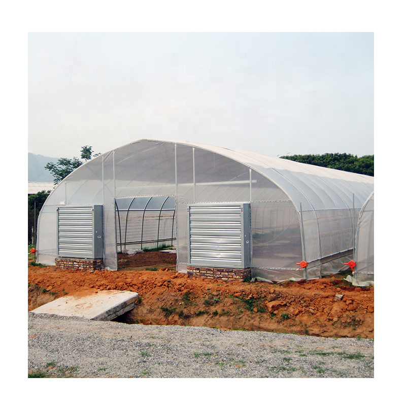 Plastic+Shed cold frame aquaponics agricultural greenhouse for hydroponic vegetable growing green house growing sale