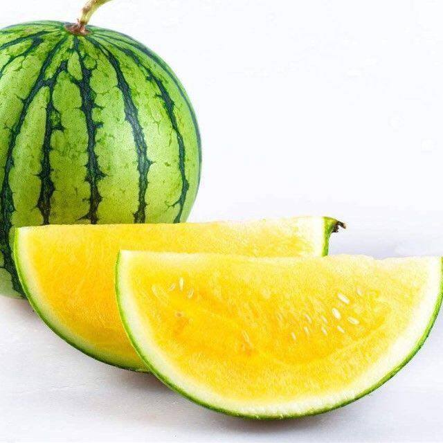 High Quality JL watermelon hybrid seed for planting