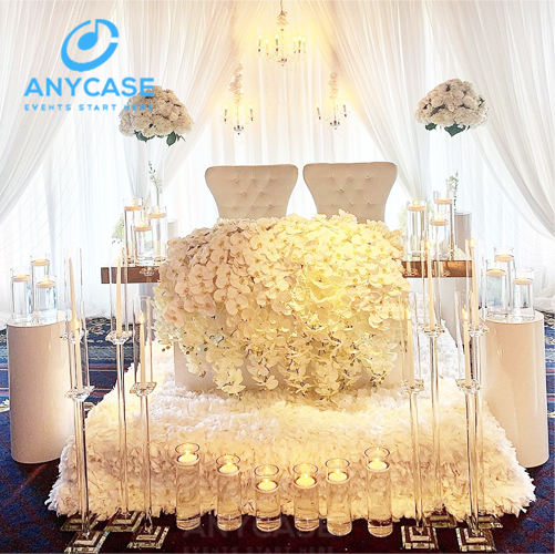 Paris Customized Light Weight Indoor backdrop stand wedding wedding stage backdrop decoration