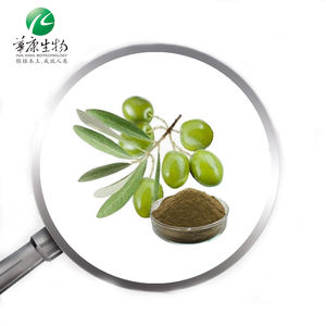 Chinese Wit Olijf Fruit Extract Exporteur