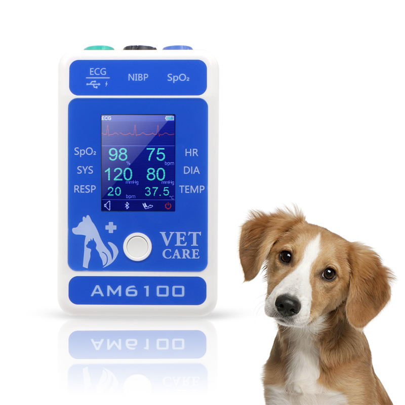 Berry AM6100 veterinary patient monitor Equipment dog vet products