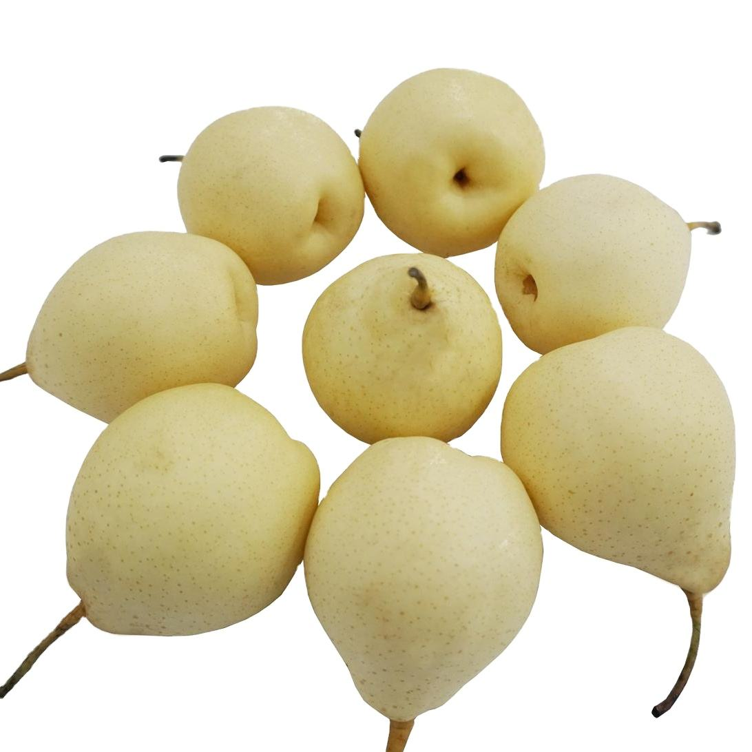 Chinese 2021 Crop Sweet And Juicy Ya Pear