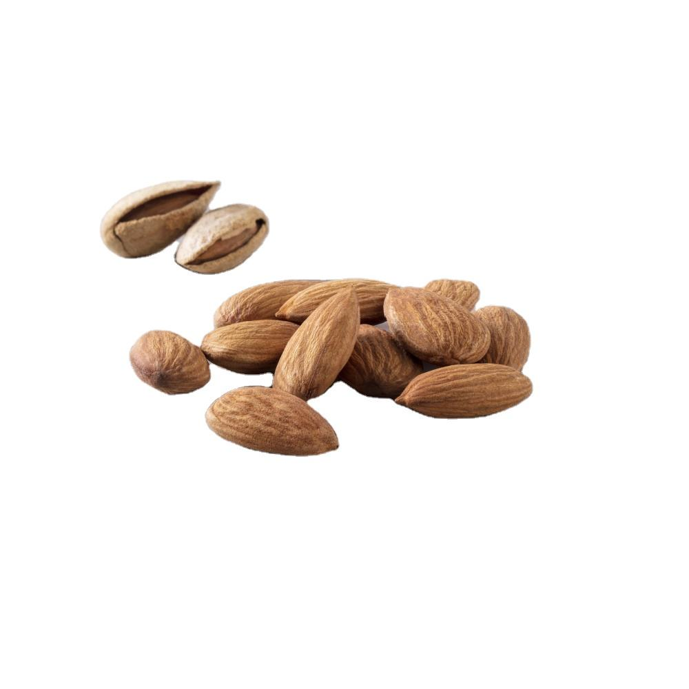Premium Quality Natural Almond Kernel Dried Nuts