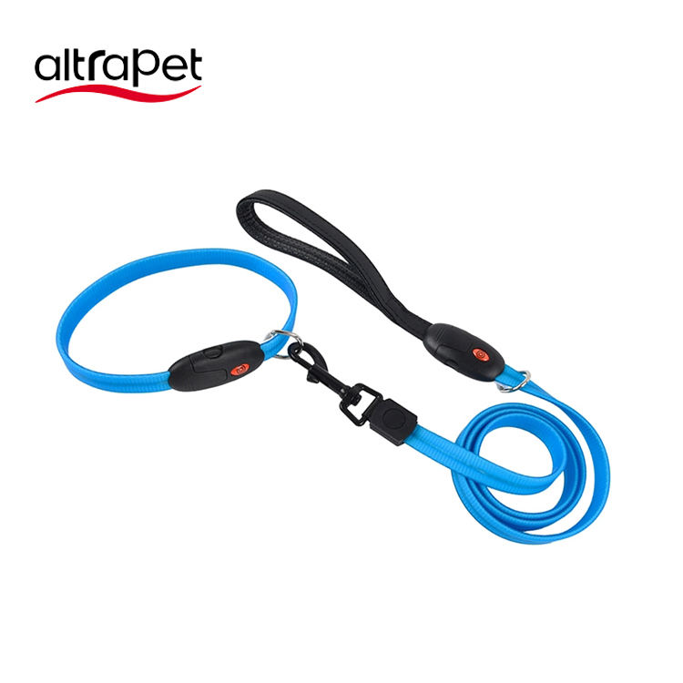 Personalized [ Pet Accessories ] Leash And Collar Pet Accessories LED Flash Lighting USB Rechargeable PVC Collar Dog Products Anti Lost Luminous Puppy Collar With Leash Set