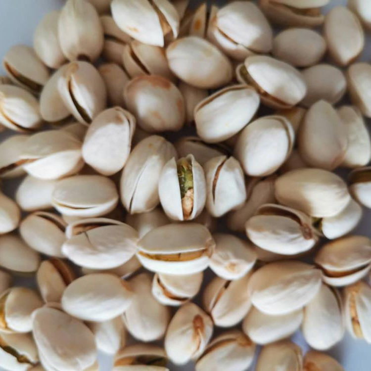 Pistachio / pistachio nuts / Iranian pistachio cheap price ready for sales