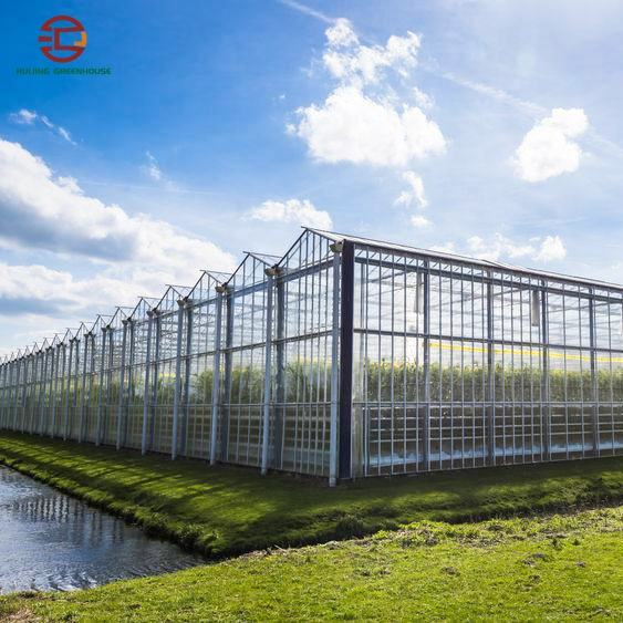 High Performance Venlo Polycarbonate Greenhouse with Complete Systems