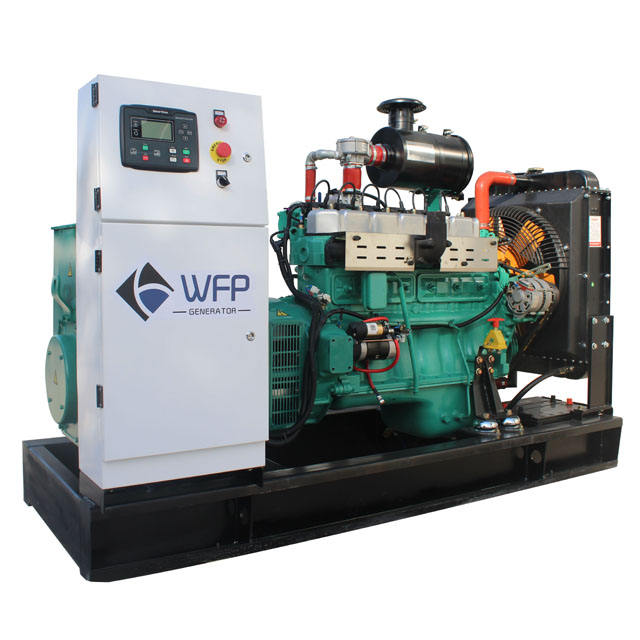 Business activities Gas generator small power 60kw natural or biogas gas generator with CHP