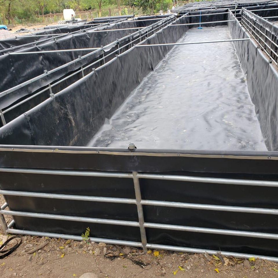 ASTM 2.0mm HDPE geomembrane plastic liner fish farm pond liner