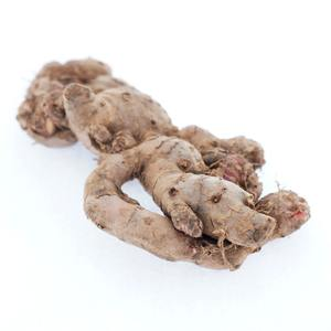 Best Selling Indonesia Red Ginger Organic For Drink