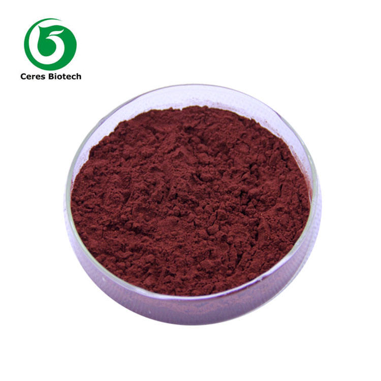Factory Supply Grape Seed Extract OPC 95%