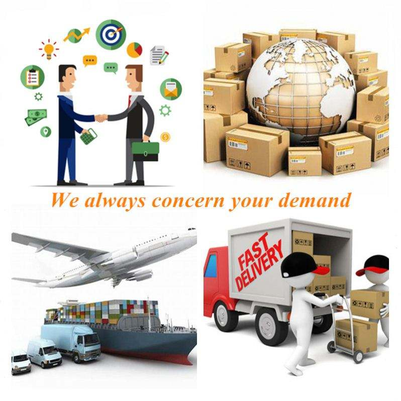 Serving 5000+ Customers In More Than 80 Countries LOGISTICS Provide Service CARGO For Worldwide
