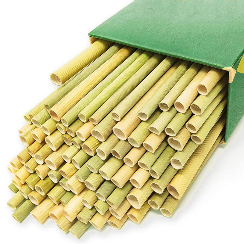 100% Organic Disposable Pack of 100 Natural Eco Friendly Biodegradable Drinking Straws Grass