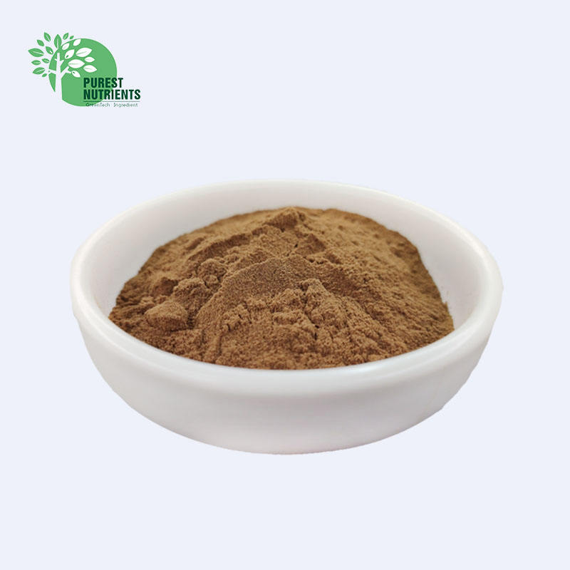 Supply Yucca Schidigera Extract Powder 10:1